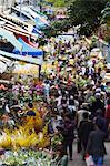 Crowds at flower market during Chinese New Year, Mongkok, Kowloon, Hong Kong, China