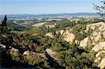 Italie, Toscane, Chiusure. L'abbaye de Monte Oliveto Maggiore, un grand monastère bénédictin du siècle 14.
