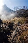 Japan,Honshu Island,Kanagawa Prefecture,Fuji Hakone National Park. Sulphur springs and grass reeds at Owakudani geothermal area.