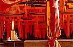 L'île de Honshu, Japon Kyoto. Fushimi Inari Taisha est un sanctuaire dédié à Inari, le Dieu du riz Shinto. Ce sanctuaire a fait cinq sanctuaires répartis sur ses terres, qui ont aussi environ 10 000 Torii (gates), chacun donnés par les fidèles ou les entreprises dont le nom et les adresses sont écrites sur le dos.