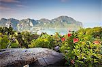 View of Ao Ton Sai and Ao Lo Dalam beaches, Ko Phi Phi Don, Thailand