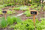 Jardin d'herbes aromatiques, Salzbourg, Land de Salzbourg, Autriche