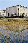 Netherlands, Groningen, Groningen, ecological housing project in Waterland quarter