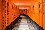 Portes Torii au sanctuaire de Fushimi Inari, Kyoto, Japon