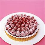 Schokoladen-Torte mit Himbeeren