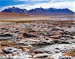 Landscape in Altiplano