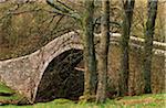 Ivelet bridge, a traditional packhorse bridge, Swaledale, Yorkshire Dales National Park, England
