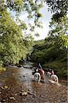England, Devon, Exmoor. Pony riding through a stream at Cloud Farm.