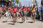 Der Start des Rennens halbjährliche Esel an s Strandpromenade Lamu, Kenia.