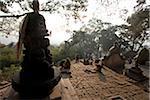 Népal, Katmandou, singes dans le Temple de Swayambunath (Monkey Temple) qui se trouve un sur une colline avec une vue superbe sur la vallée de Katmandou
