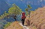 Female hiker on mountain trail, Njesuthi valley, KwaZulu-Natal Province, South Africa