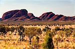 Australie, Northern Territory, Parc National d'Uluru-Kata Tjuta. Découvre à travers les plaines de spinifex à Kata Tjuta (The Olgas). (PR)