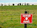 Falkland Island, rein Cove. Manchots papous dans un champ de mines non marquée par une clôture de barbelés et signe d'avertissement.