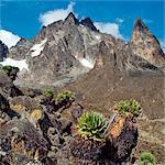 Kenya. The peaks of Mount Kenya, Africa s second highest snow-capped mountain.