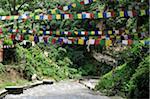 Bagmati River, Pashupatinath Temple, Kathmandu, Bagmati, Madhyamanchal, Nepal