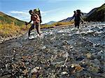 Deux randonneurs femelles avec Cannes traverse le ruisseau de Windy le long du sentier de la rivière de sanctuaire dans le Parc National de Denali, Alaska intérieur, automne