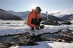 Backpacker fills pan with water from a creek at an alpine camp below Mt. Chamberlin, Brooks Range, ANWR, Arctic Alaska, Summer