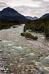 Un cours d'eau affluents coulant sur les rochers en route vers la rivière Matanuska, centre-sud de l'Alaska, l'été
