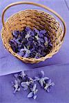Violet flowers in basket