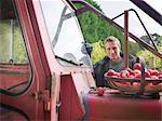 Agriculteur avec pommes et tracteur
