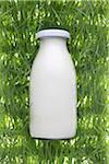 Milk Bottle on Artificial Grass