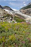 Berendon Glacier, Coast Mountains, British Columbia, Canada