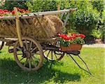 Old Fashioned Hay Cart, Schmachtenberg, Bavaria, Germany