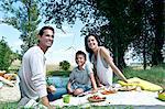 Family having a picnic
