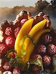 Mango und Himbeer-Törtchen
