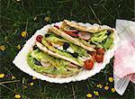 Sandwichs au pain pita