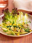 Chicory,cucmber and tofu salad