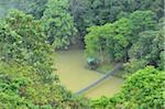 Pont au-dessus de l'eau dans la forêt tropicale, Sepilok Rainforest Discovery Center, Sabah, Borneo, Malaisie
