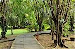 Boardwalk, le Village culturel de Sarawak, Santubong, Sarawak, Bornéo, Malaisie