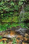 Waterfall, Sarawak Cultural Village, Santubong, Sarawak, Borneo, Malaysia