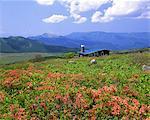 Kirigamine, Nagano, Japon