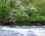 Towadako, Aomori, Japan