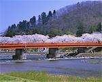 Hinokinaigawatsutsumi, Akita, Japan