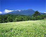 Mt.Mitake, Nagano, Japon