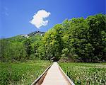 Okususobana Natural Garden, Nagano, Japan
