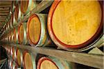 Australia, Western Australia, Swan Valley, Guildford.  Wine barrels at a Swan Valley winery.