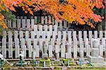 Asie, Japon. Kyoto, Sagano, Arashiyama, cimetière et automne feuilles