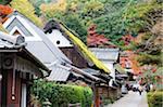 Asie, Japon. Kyoto, Sagano, Arashiyama, maisons de toit de chaume