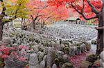 Asie, Japon. Kyoto, Sagano, Arashiyama, Adashino Nenbutsu dera temple, des lanternes de Pierre et des images de Bouddha