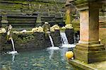 Indonesia, Bali, near Ubud, Tirta Empul temple, sacred public bath