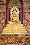 Thaïlande, Chiang Mai, temple de Wat Phra Singh, Bouddha d'or