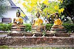 Thaïlande, Chiang Mai, temple Wat Jet Yot, statues