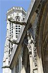 France, Paris, église de saint germain l'Auxerrois, gargouilles