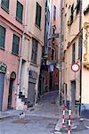 Italie, Ligurie, Gênes, chat dans la rue