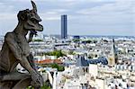 France, Paris (75), Ile de France, gargouille de Notre Dame