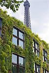 France, Paris, quai Branly museum and Eiffel tower